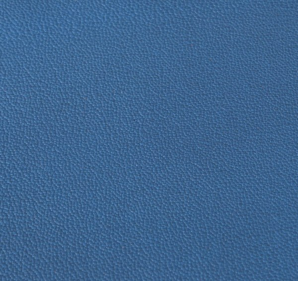 Chevre Chagrin: Blue