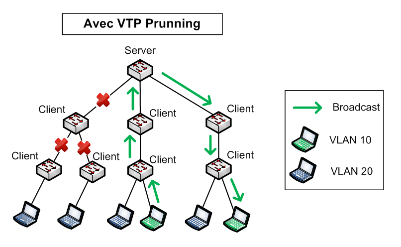Architecture with VTP Prunning