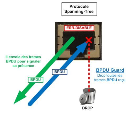 BPDU Guard puts port in ERR-DISABLE mode