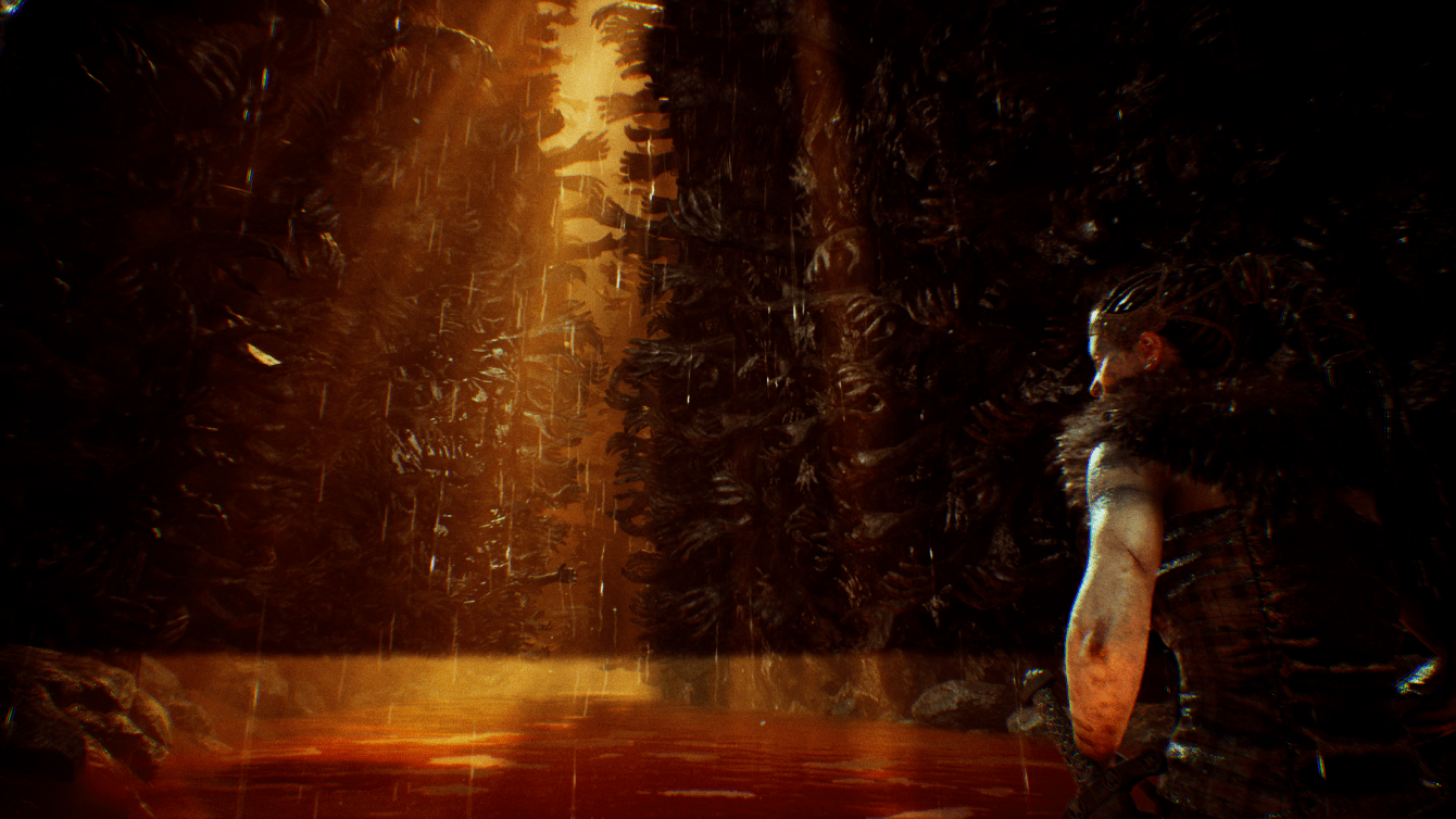 Hellblade Senua's Sacrifice Screenshot 2017.08.11 - 19.03.09.52.png
