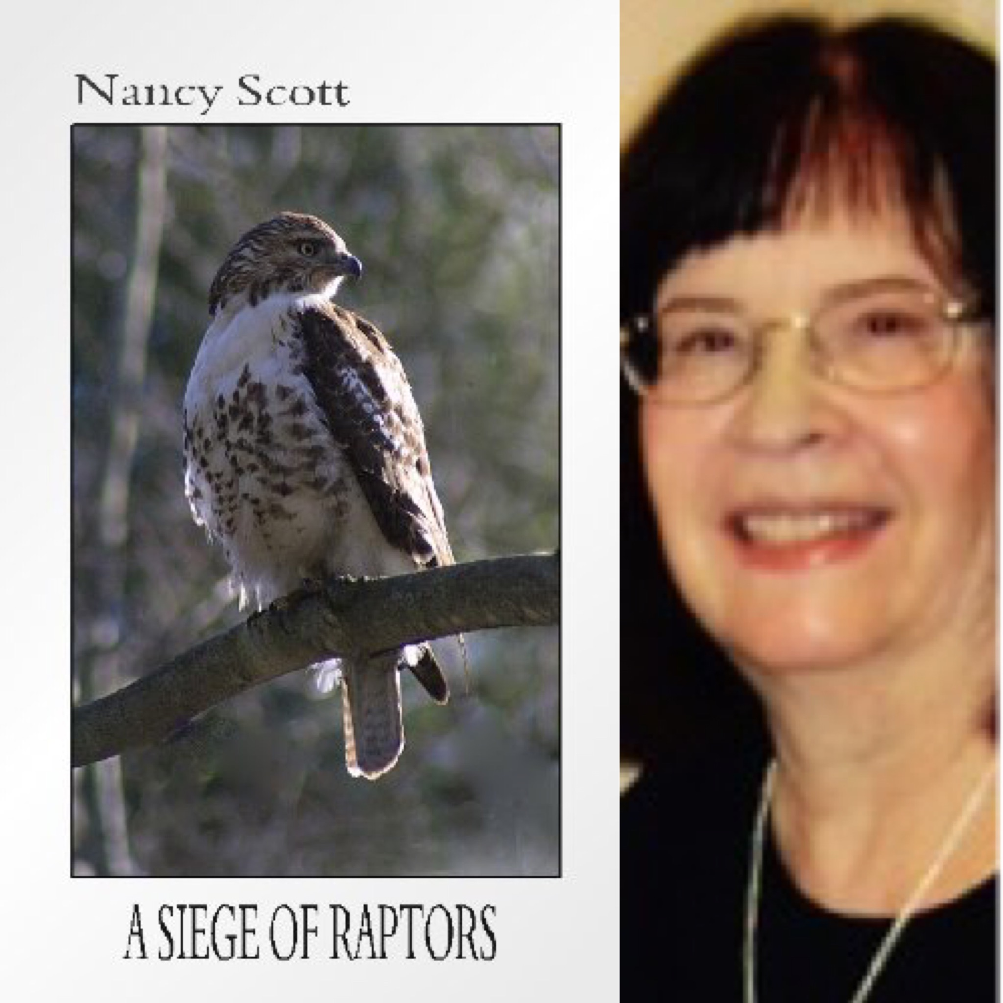 A Siege Of Raptors By Nancy Scott Finishing Line Press