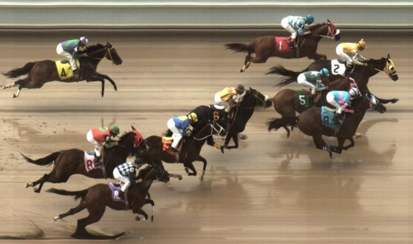 Horse Racing & Greyhound Photo-Finish Timing Systems ...