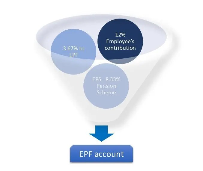 Components in employee provident fund contribution