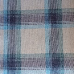 Aviemore_Plaid_Wedgewood