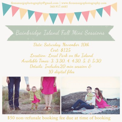 Bainbridge Island Holiday Mini Sessions!