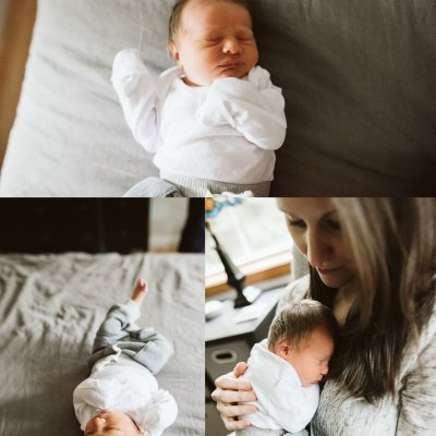 Newborn baby boy and his two doodle siblings! | Newborn Photos in Seattle