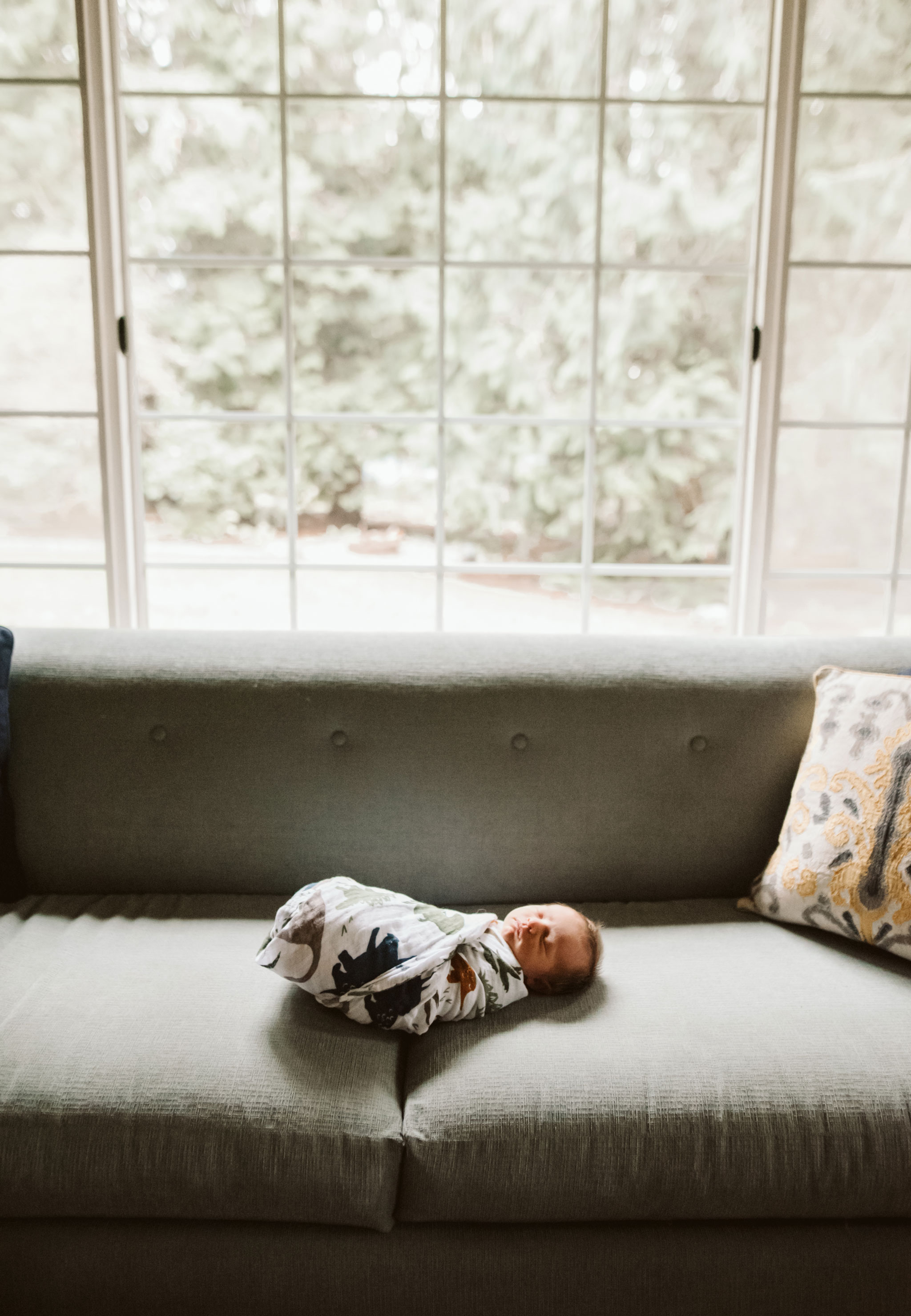 newborn baby boy on the couch in pretty light