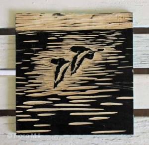 Oystercatchers in flight,  plate