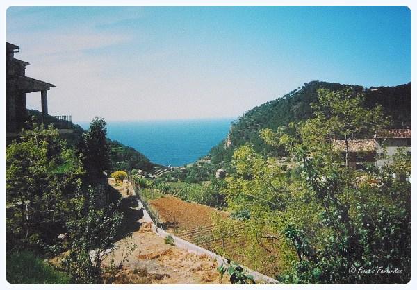 Bunyalbufarviewtoport