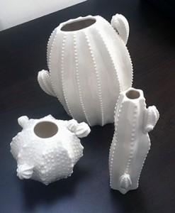 Vasi in ceramica a forma di cactus