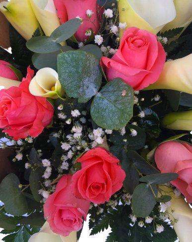 roselline rosa e calle