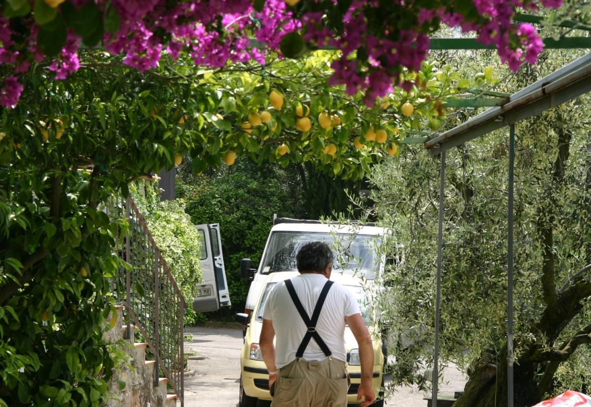 Giardino privato a Scandicci