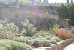 Giardino privato Panzano Greve in Chianti-FI