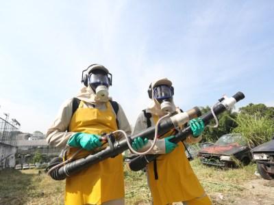 Veja número de visitas de combate ao Aedes aegypti por bairro de SP