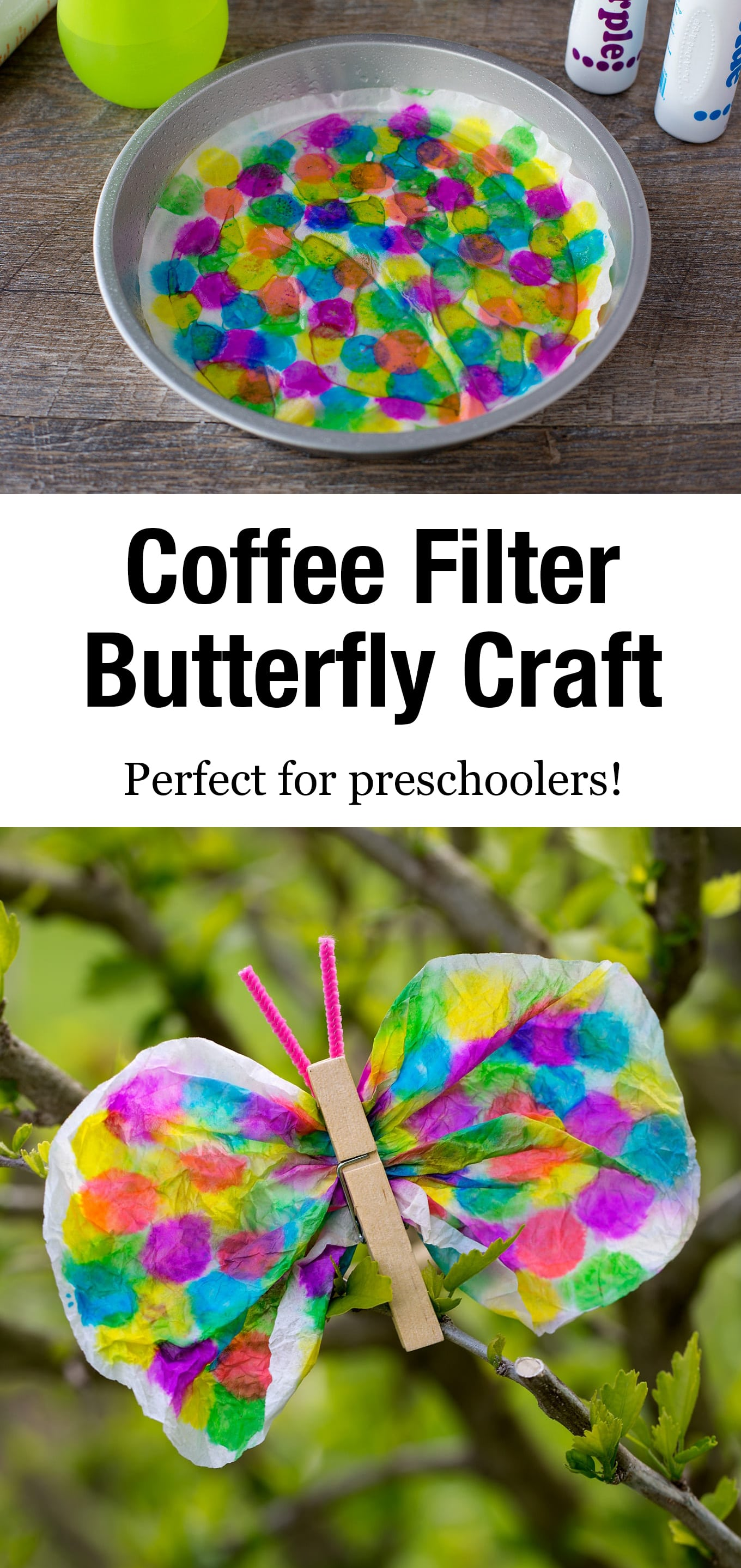 Not only is this Coffee Filter Butterfly lovely, but it is packed with fine-motor skills! Dabbing, squeezing, scrunching, pinching…it's perfect for kids! #butterflycraft #coffeefiltercraft #springcrafts #preschool via @firefliesandmudpies