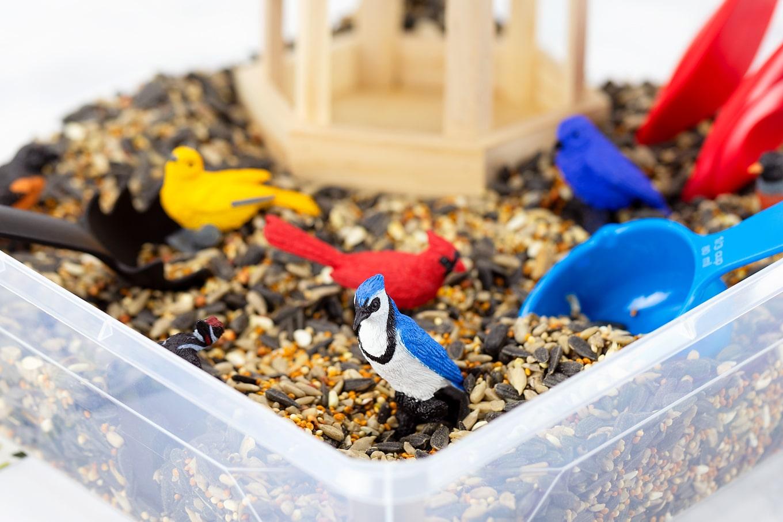 Birdseed Sensory Bin with Plastic Bird Toys