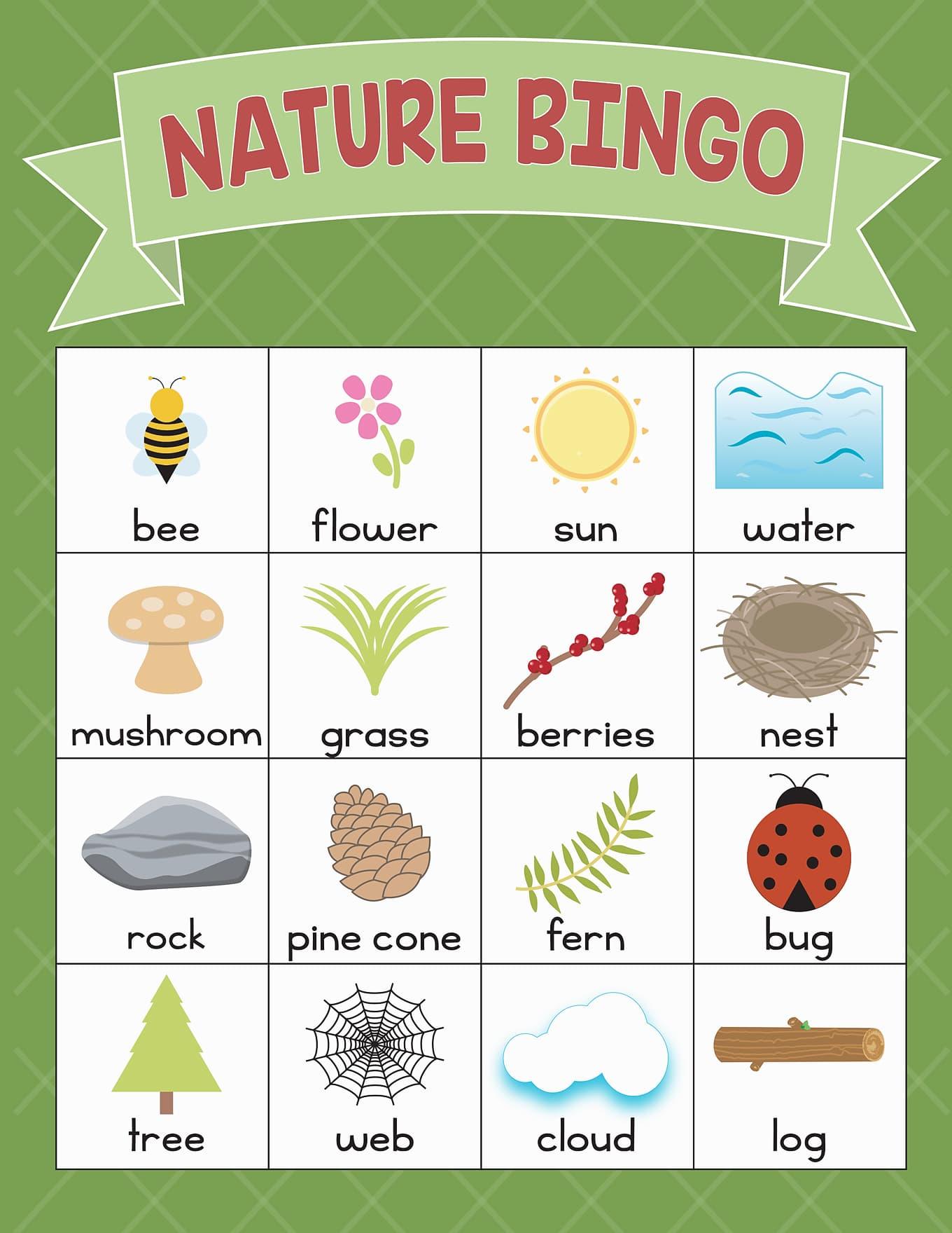 Green Nature BINGO Card