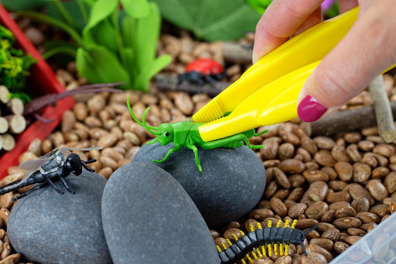 Using Jumbo Tweezers in Bug Sensory Bin