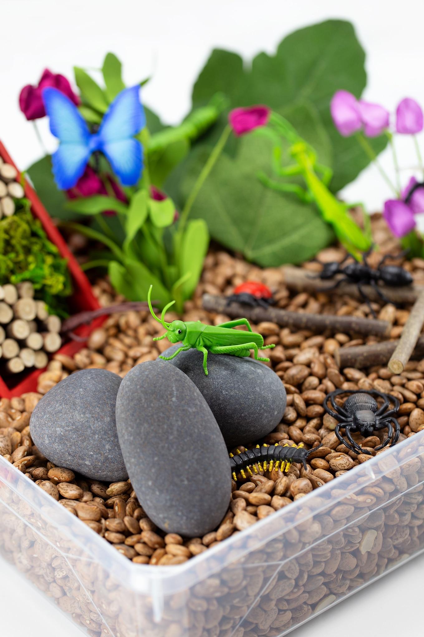 Bug Sensory Bin for Kids