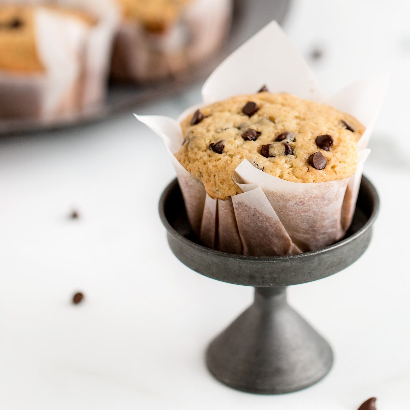 Single Chocolate Chip Muffin