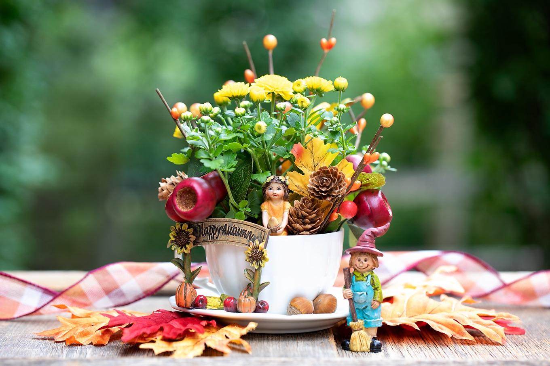DIY Fall-Inspired Teacup Garden