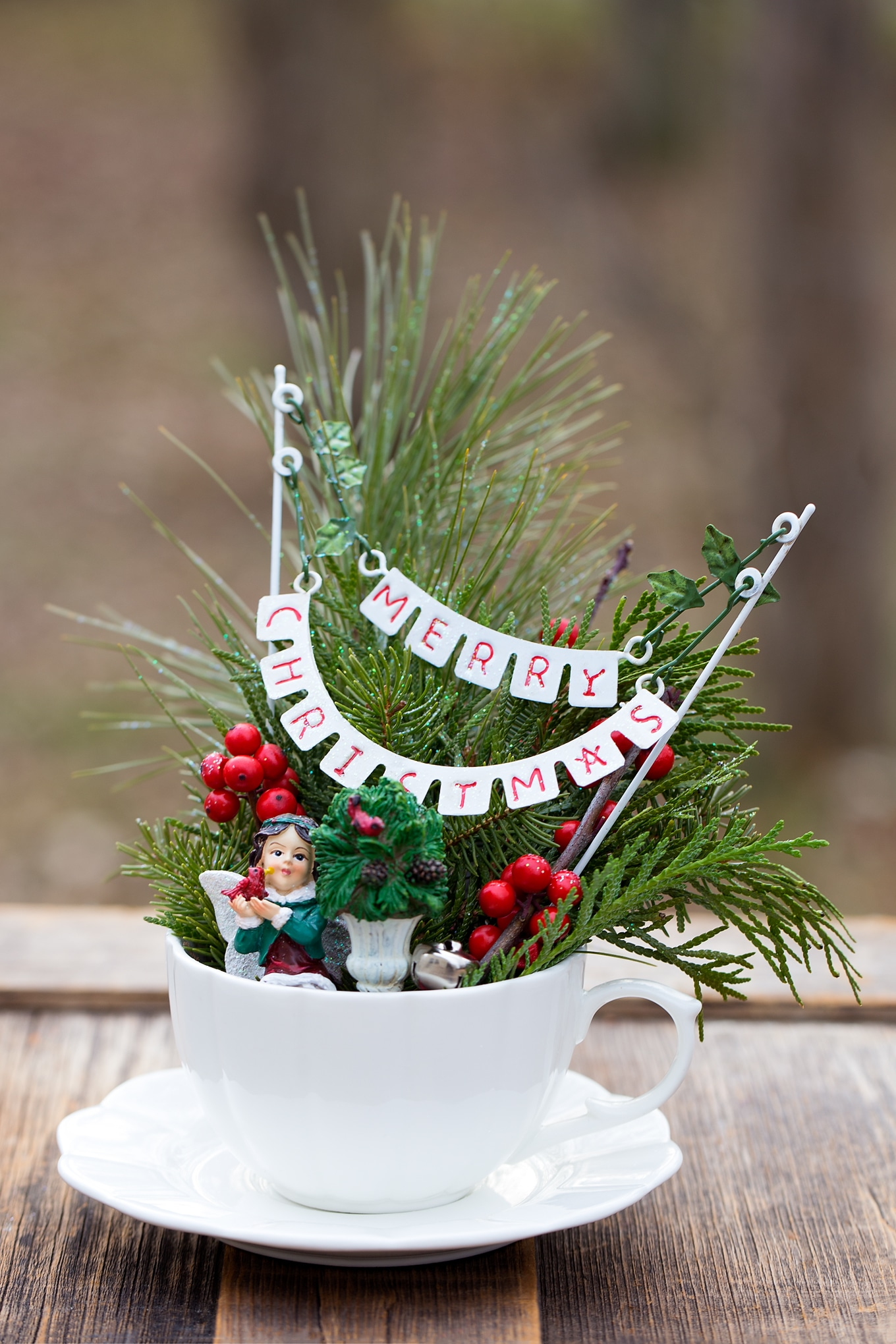 How to Make a Festive Christmas Teacup Garden