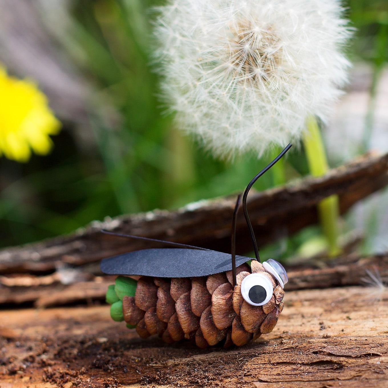 Pine Cone Fireflies