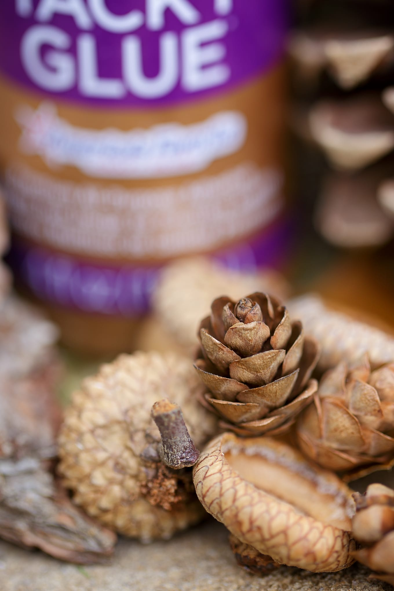 Supplies Needed for Pine Cone Owl Craft
