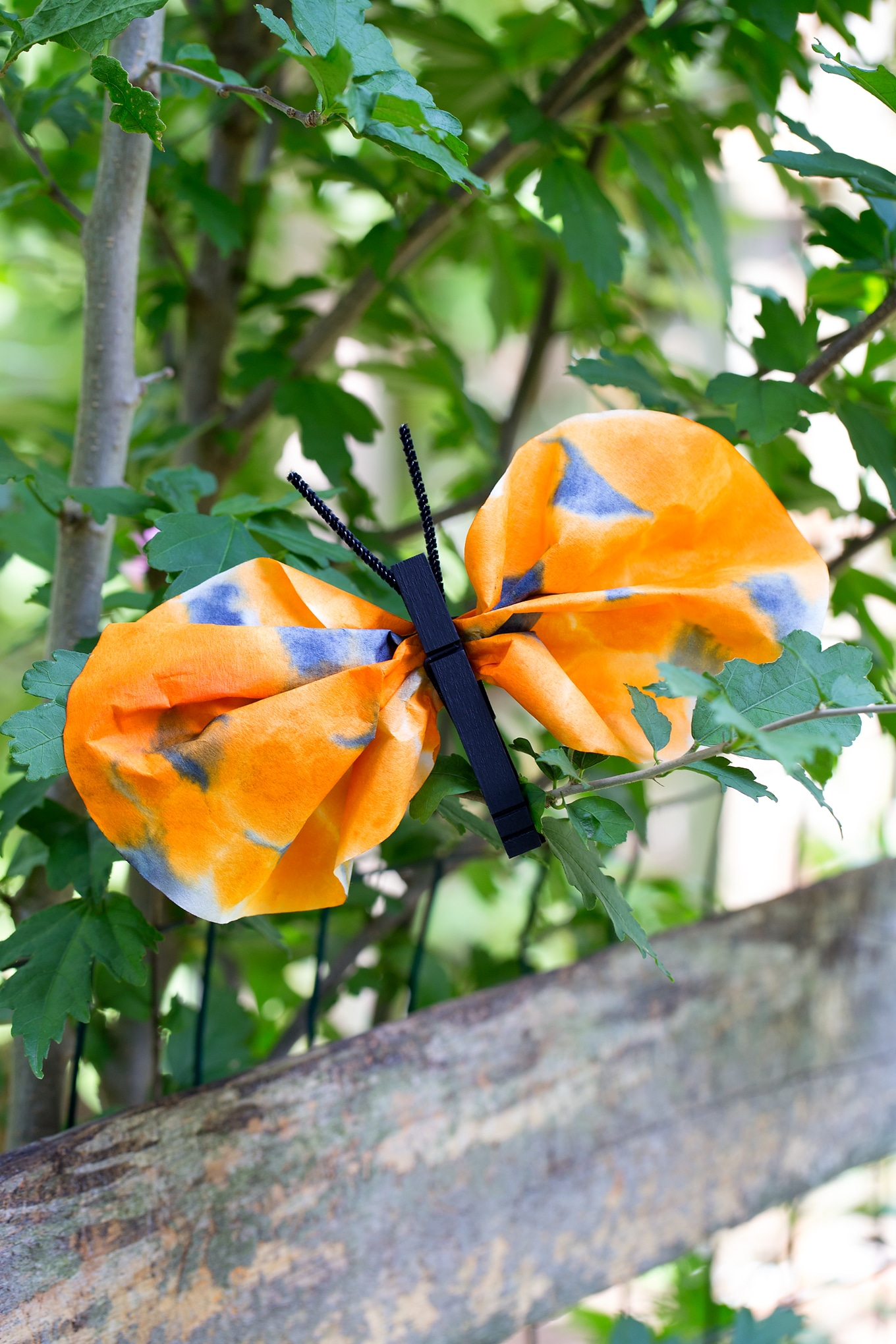 Easy and Fun Monarch Butterfly Craft for Kids