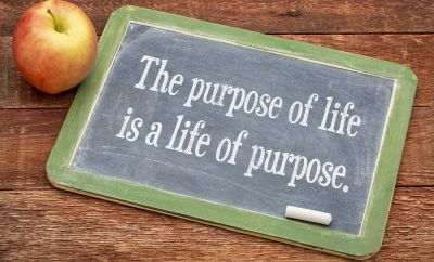 How to find your purpose?