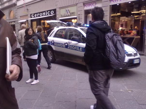 Le guardie zoofile arrivate dopo la rissa dei punkabbestia