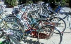 Prato, targa alle biciclette per combattere i furti