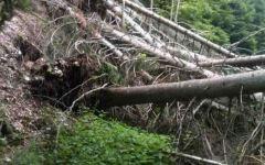Grosseto: acquedotto spaccato a Salaiola, senz'acqua molti comuni della provincia