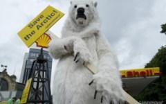 Campagna di Greenpeace, orso polare sotto la Torre di Pisa