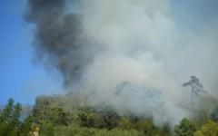 Incendi, a fuoco 5 ettari di bosco a Massarosa
