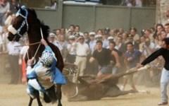 Palio di Siena, cavallo si infortuna