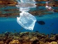 Il 41% della spazzatura nel mar Tirreno è costituito da buste di plastica