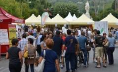 Una delle passate edizioni del Festival della salute a Pietrasanta