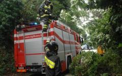 Firenze: cade con il parapendio e resta impigliato in un albero. Salvato dai vigili del fuoco