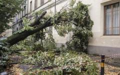 Maltempo, si contano i danni in Toscana