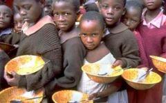 Sicurezza nei cibi al centro della Giornata mondiale dell'alimentazione 2013