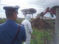 I controlli e le scoperte dei carabinieri del Noe