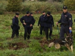 Ricerche con unità cinofile dei carabinieri