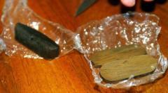 Funghi allucinogeni in casa, arrestato