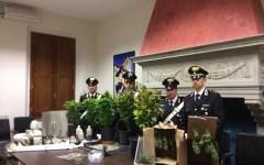 Controlli antidroga, 5 arrestati dai Carabinieri