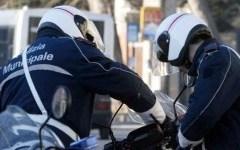 Livorno: investe cinghiale con lo scooter, ed è travolto e ucciso da un'auto