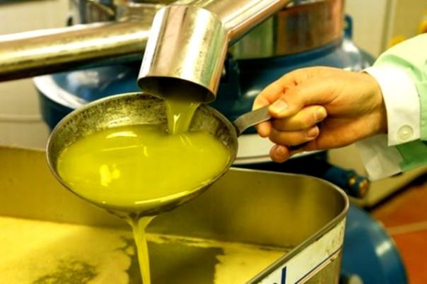 Olio in produzione
