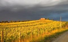 Toscana, previsioni meteo per il lungo ponte del 1 Maggio: sole e ombrello