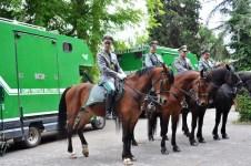 Equipaggi a cavallo della Forestale