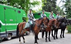 Corpo Forestale assorbito dall'Arma dei carabinieri: i sindacati faranno ricorso alla Corte di giustizia europea